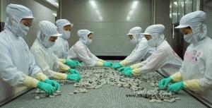 Thiết kế thi công xưởng chế biến hải sản – Tư vấn xây xưởng chế biến hải sản trọn gói giá rẻ