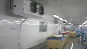 Nhận thi công kho lạnh thực phẩm, thủy hải sản - Kho bảo quản lạnh cần đạt tiêu chuẩn gì?